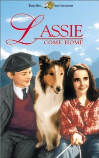Foto alba: Ukázky s filmu:Lassie se vrací ( Lassie Come Home) - Elizabeth Taylor