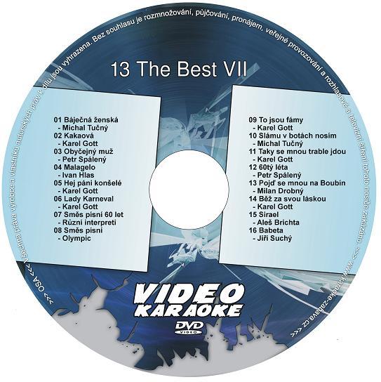 Karaoke  13 The Best VII
