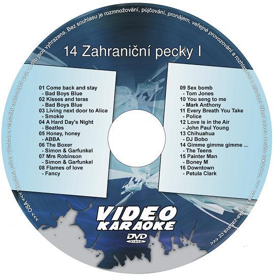 KARAOKE ZÁBAVA: Karaoke DVD 14 Zahraniční pecky I