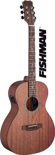 James Neligan DEV-PFI, elektroakustická kytara - Elektro-akustická kytara typu Parlor